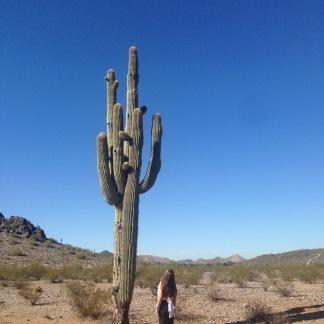 Mountain Preserve, Arizona