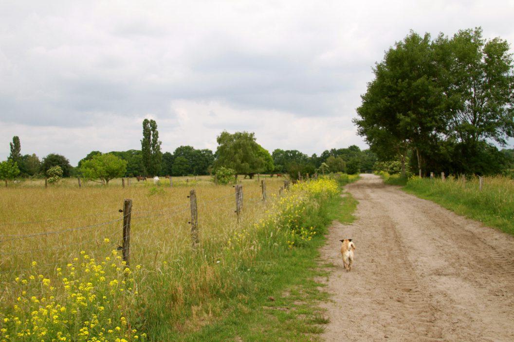 Bauernhof statt Spielplatz