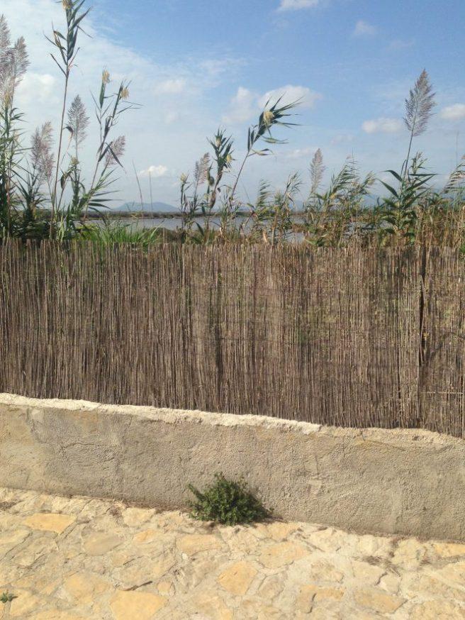Mallorca Playa de Muro Naturschutzgebiet